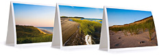 Wellfleet Cape Cod Notecard Collection