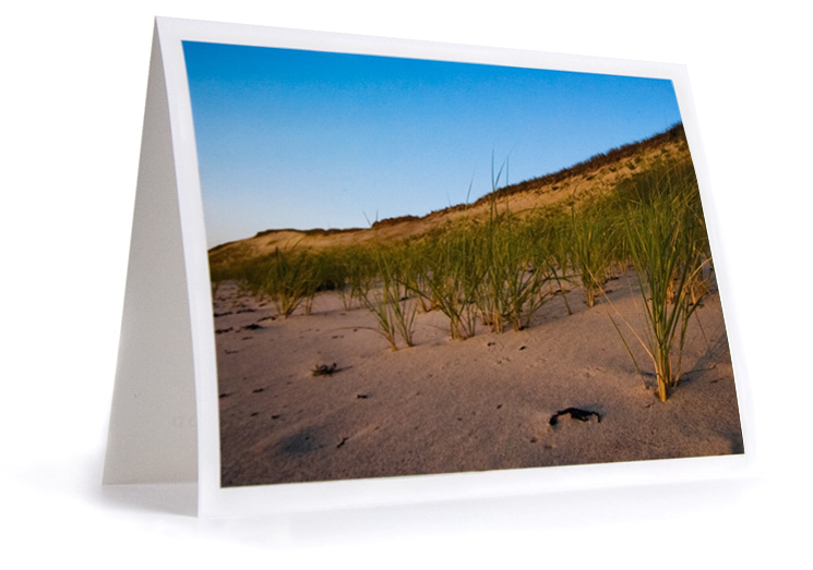 Wellfleet Cape Cod Notecard Set